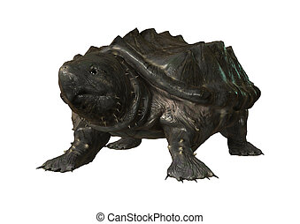 3D Rendering Alligator Snapping Turtle on White - 3D...