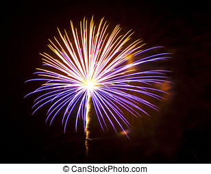 Star Burst - A fireworks display that resembles a star going...