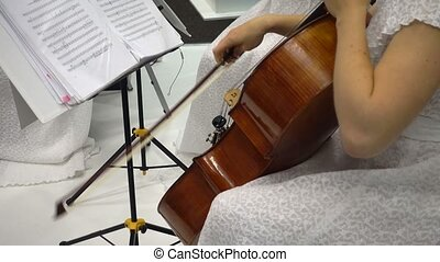 Young caucasian woman plays violin - Young caucasian woman...