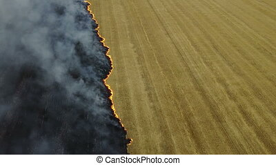Fire in the field with stubble of wheat at sunset. Aerial...