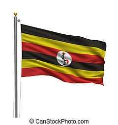 Forex koers in Uganda vandag