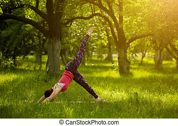 Woman standing in downward facing dog pose with raised leg....