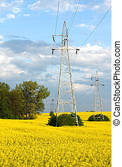 Electric pylons and farmland - Rapeseed field and electric...