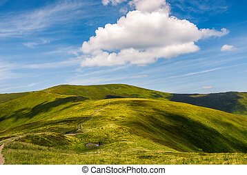 beautiful summer landscape in mountains. fine weather with...