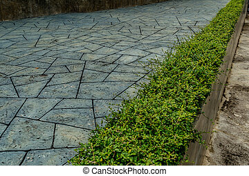 Concrete Pathway in garden - Concrete pathway with green...