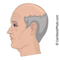 Illustration of an elderly man with gray hair and a bald...