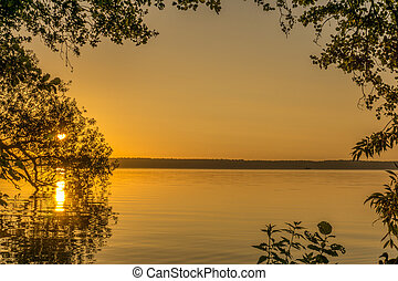 Sunrise over a lake with leaves of trees in the foreground