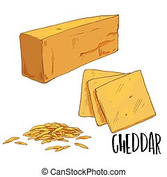 Full color cheese illustration, vector hand drawn - Cheddar....
