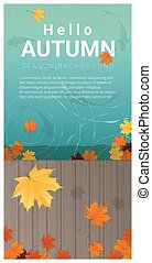 Hello autumn background with colorful leaves on wooden pier...