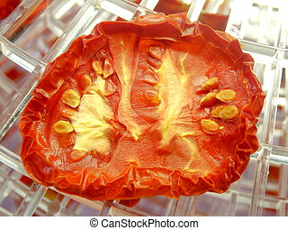 Dried Tomato - Close up of a dried tomato in an electric...