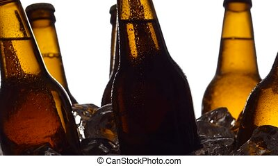 Beer festival, bottles stand in pieces of ice. White background. Silhouette. Close up