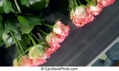 Roses tied up on a conveyor. View from above. - Flowers...