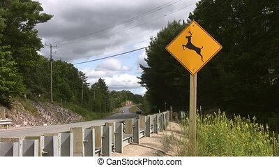 Caution! Deer sign. Two shots. - Sign at side of road...