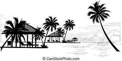 Vector - The Tropics