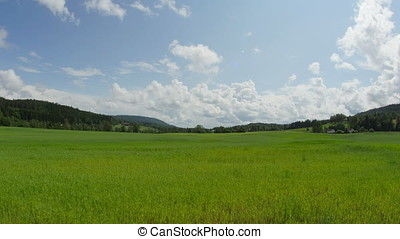 Nature timelapse. Beautiful summer landscape timelapse. Forest, green field, blue sky with clouds and road timelapse
