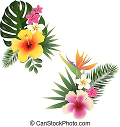 Tropical Flower Set, Vector Illustration, With Gradient Mesh