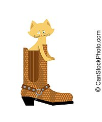 Cat in boot isolated. Home pet in shoes