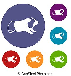 Hamster icons set in flat circle reb, blue and green color...