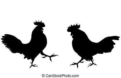 Two fighting cock against white background. Vector Illustration.