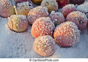 Red apple on table in winter snow with ice crystals - Red...