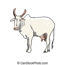 Indian holy cow hand drawn icon
