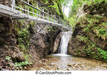 Footbridge and cascade in forest - Empty footbridge and...