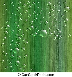 Water drops on fresh green grass, realistic vector illustration