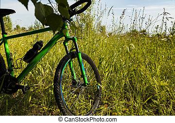 mountain bike wheel on green grass - Cycling, mountain bike...