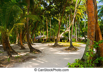 bungalows - Bungalows on beach and sand pathway - vacation...