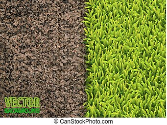 Image of soil and green grass texture. Natural texture....