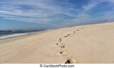 Following footprints on Beach Shore at Low Angle.