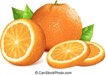 Oranges. Vector illustration of whole, cut and slice...