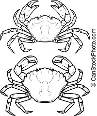Set of crabs icons isolated on white background. Design elements