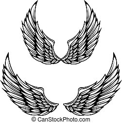 Vintage wings isolated on white background. Design elements...