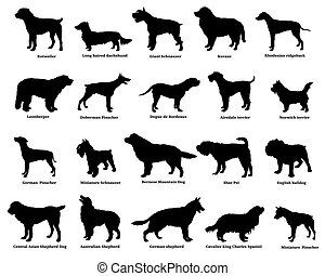 Set of dogs silhouettes