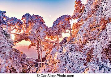 Winter sunrise landscape in Huangshan National park. China