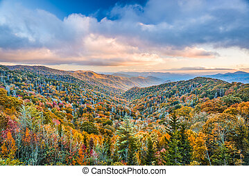 Smoky Mountains National Park, Tennessee, USA autumn...
