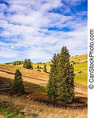 The autumn - The landscape of the Alps di Siusi. The winter...