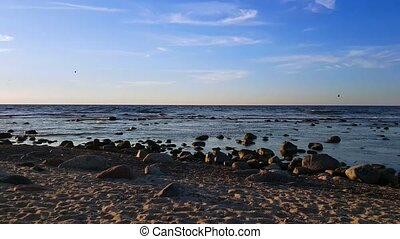 Baltic Sea shore at sunny summer day time - Baltic Sea shore...
