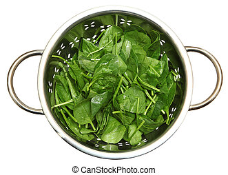 Spinach in Colander - Spinach Leaves Fresh Washed in Metal...