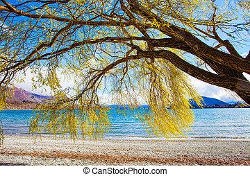 beautiful scenic of lake wanaka southland new zealand