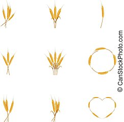 Wheat ears or rice icons set, cartoon style