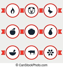 Vector Illustration Set Of Simple Nature Icons. Elements...