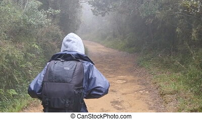 Hiking woman with backpack running in tropical wet forest....