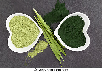 Green healthy superfood. Spirulina and chlorella. - Green...