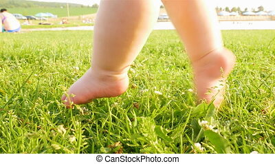 baby's cute feet - small baby's cute feet on the summer...