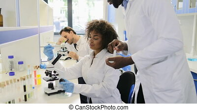 African American Scientists Team Working In Genetics Lab...
