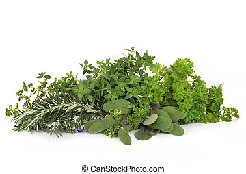 perejil, sabio, romero, Tomillo, hierbas