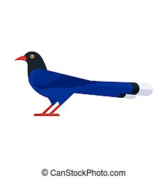illustration of Taiwan blue magpie. - Vector flat style...