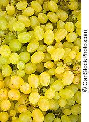 White grape berries (Vitis) background - Fresh white grape...